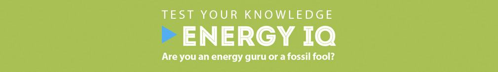 Energy IQ Quiz
