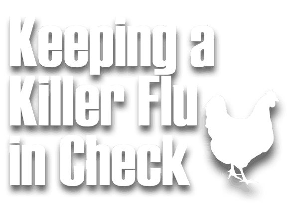 Keeping a Killer Flu in Check