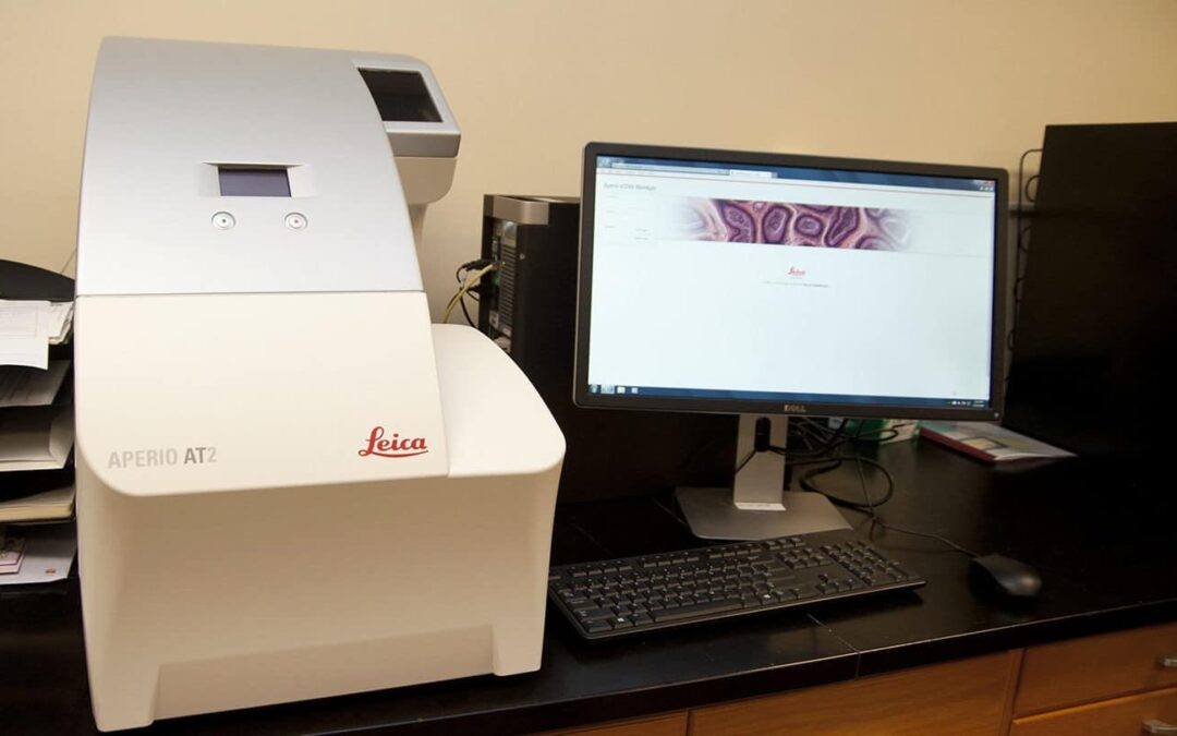 New digital pathology systems shots and students work shots
