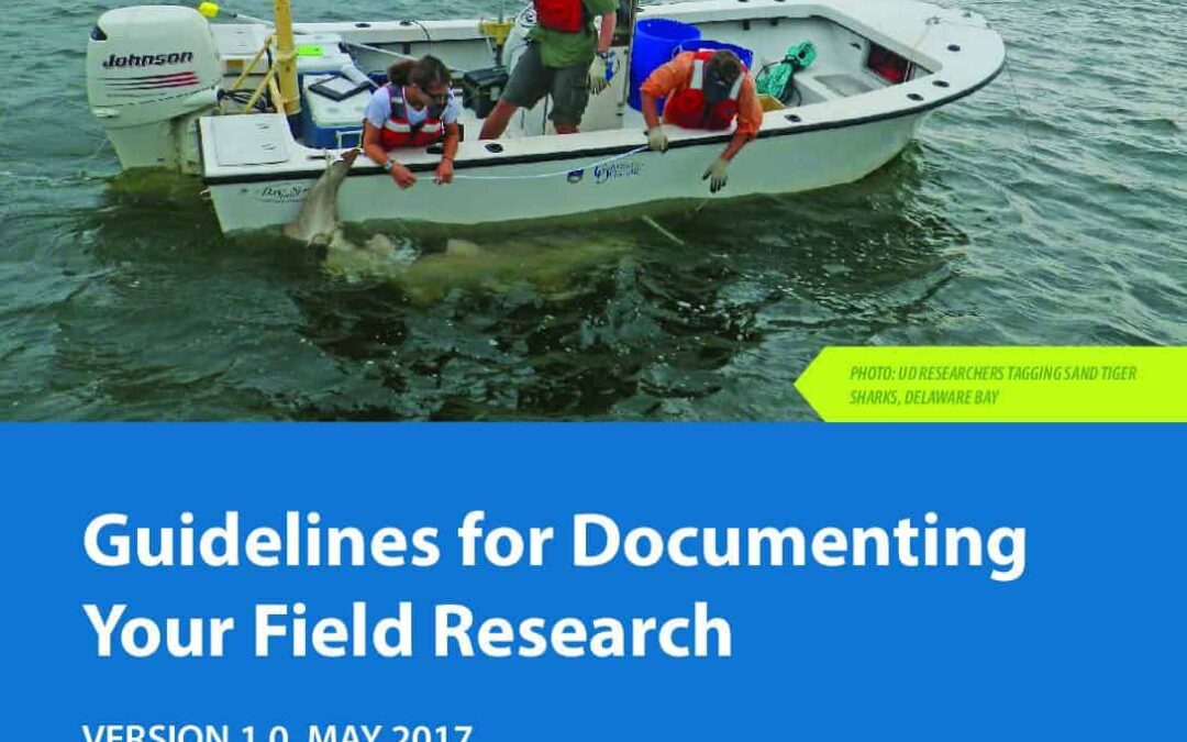 field-research-guidelines