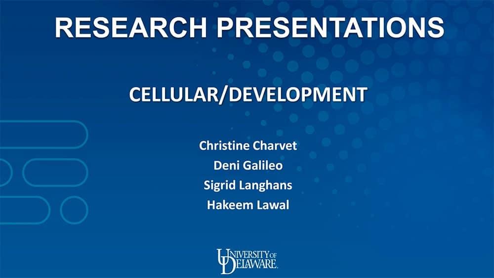 Cellular/Developmental