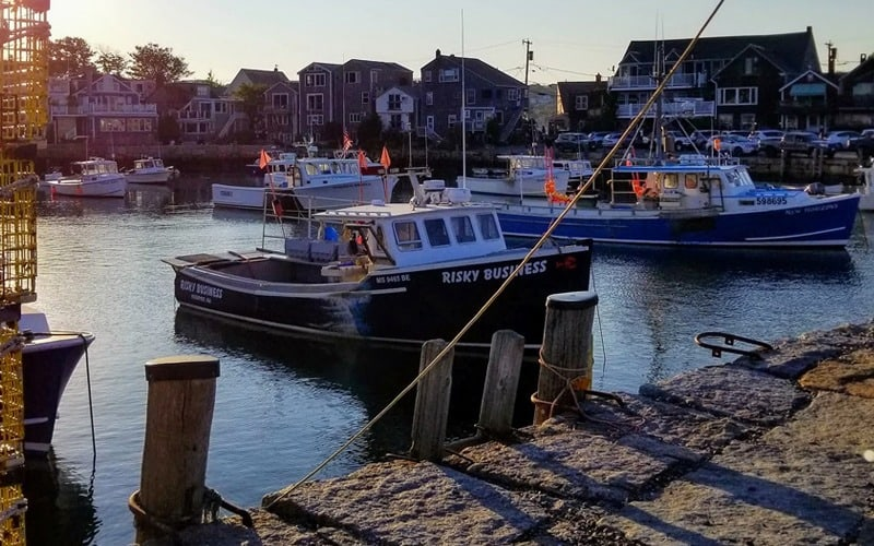 New England losing fishing jobs due to climate