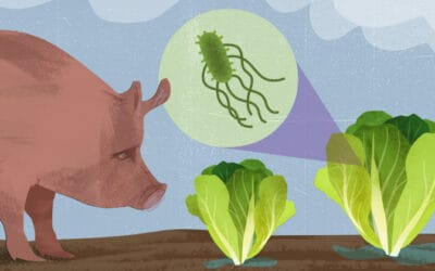 Leaping Listeria