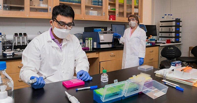 UD Opens Third Phase of Research Operations