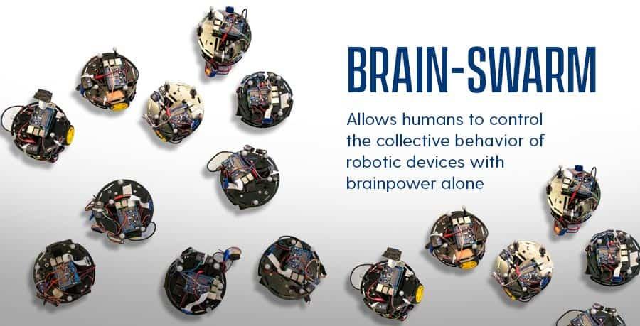 Brain Swarm