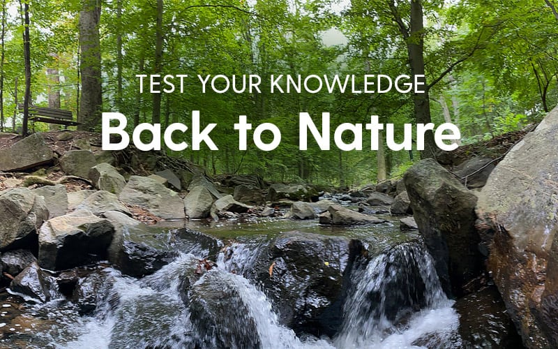Test Your Knowledge - Back to Nature