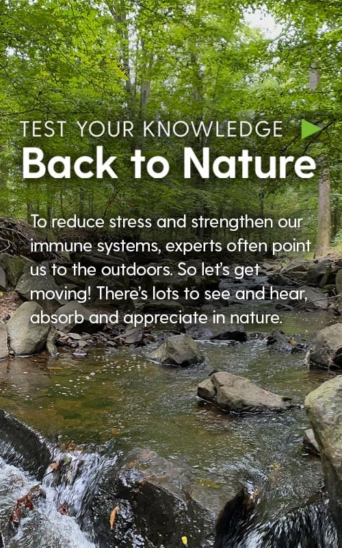 Test Your Knowledge: Back to Nature  To reduce stress and strengthen our immune systems, experts often point us to the outdoors. So let's get moving! There's lots to see and hear, absorb and appreciate in nature.
