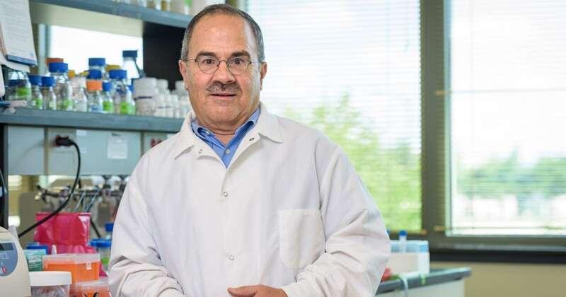 Prof. Eleftherios (Terry) Papoutsakis