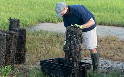 Delaware Sea Grant COVID Response