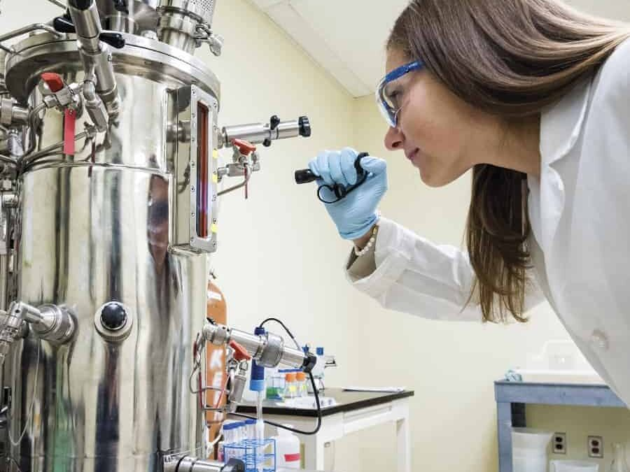 Jennifer Mantle, NIIMBL's regulatory committee coordinator, at work in the laboratory at UD